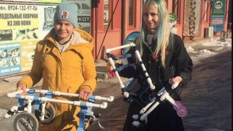 Школьница из Уссурийска смастерила инвалидную коляску для саратовского пса