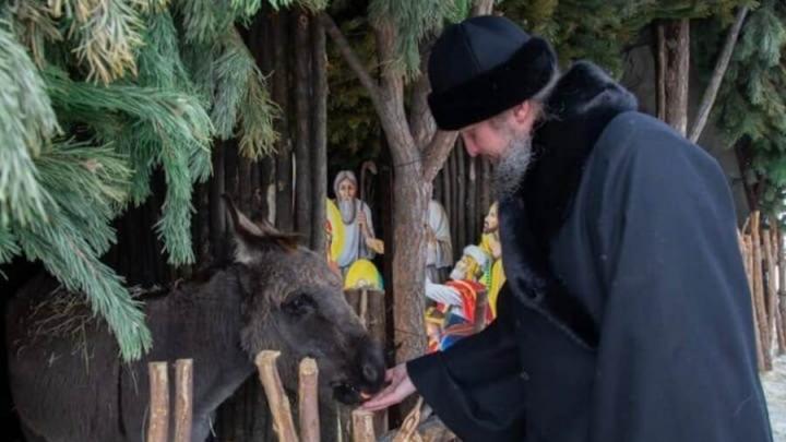 Вертеп с евангельскими животными открылся в Энгельсе