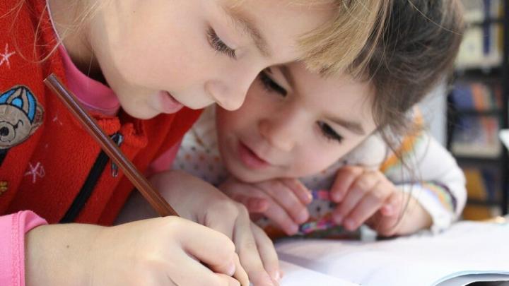 Школы Саратова после новогодних каникул будут работать в обычном режиме