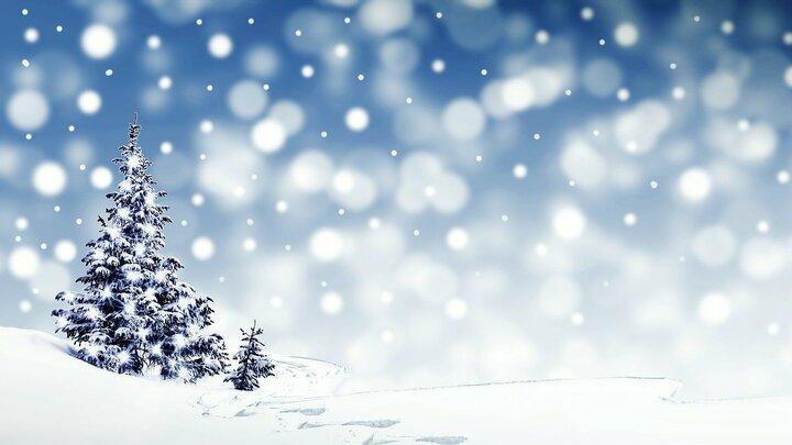 Легкий снег снова выпадет в Саратове