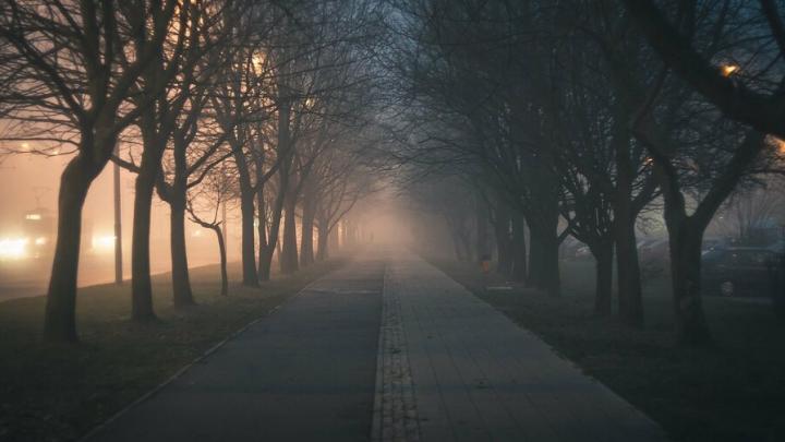 Сильный туман опустится на Саратов