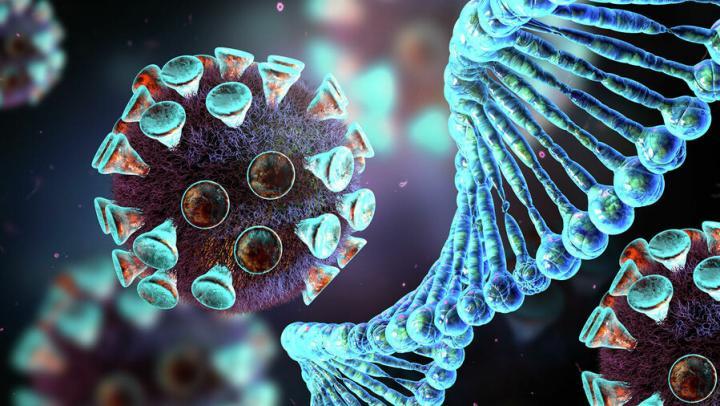 Опасные последствия коронавируса разделили на три группы