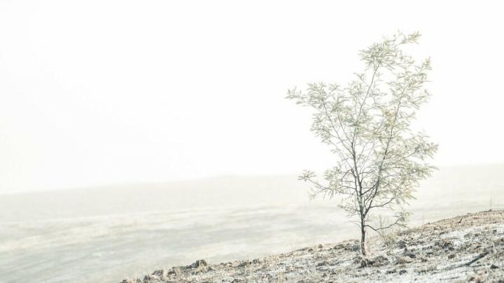 Из-за крепких морозов отменены занятия в Саратовской области