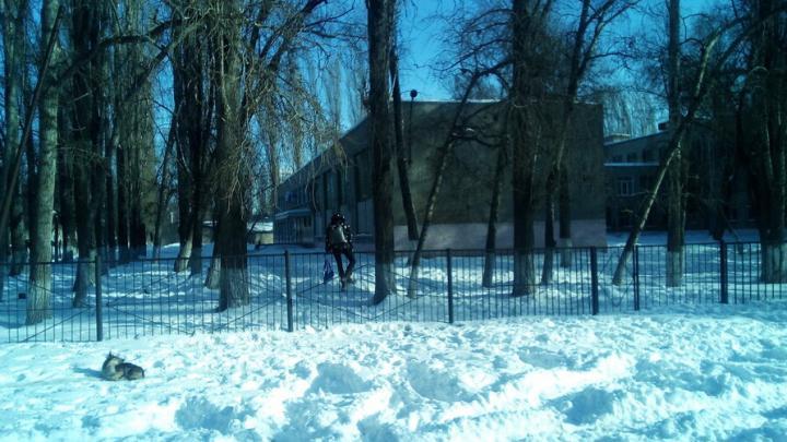 К школе №5 в Заводском районе пристроят учебный корпус