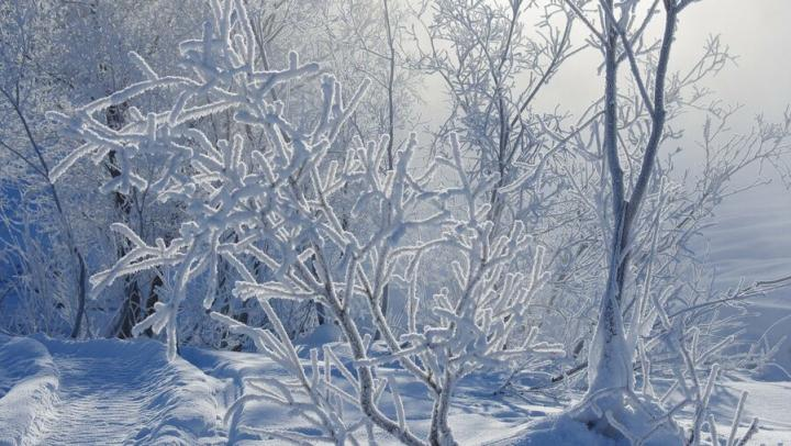 Мороз -30 никуда не уходит из Саратова