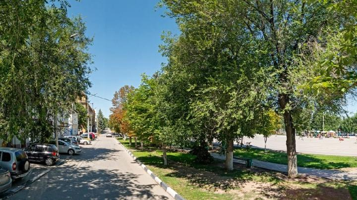 Администрация Энгельса заказала расчистку охранных зон от растительности