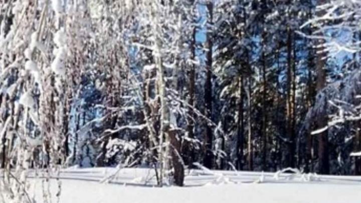 Окончательно снято ограничение на федеральной трассе в Саратовской области