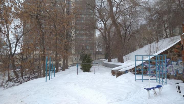 На набережной Саратова определили место для выгула собак