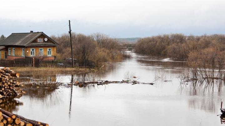 Стало известно, какие районы Саратовской области должно затопить в этом году