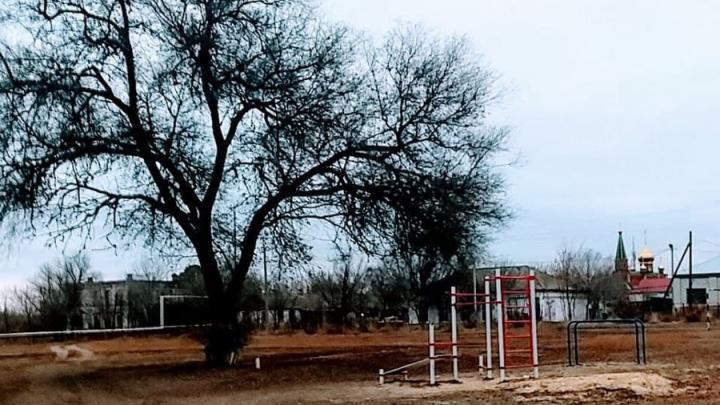 Школа и детский сад в Турковском районе на карантине из-за ковида