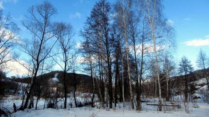 Резкое потепление идет во всей европейской части России