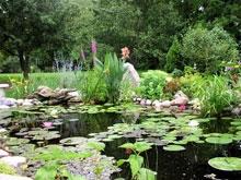 Андреевские пруды обустроят для комфортного отдыха саратовцев