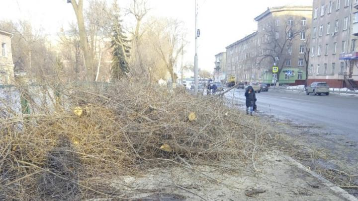 Спиленные ветки завалили путь саратовским пешеходам