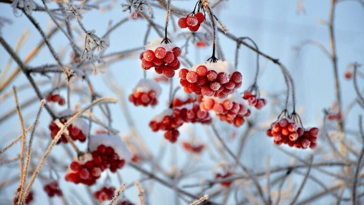 Снег в Саратове кончится к утру