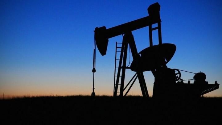Загрязнение почвы нефтью произошло в Энгельсском районе