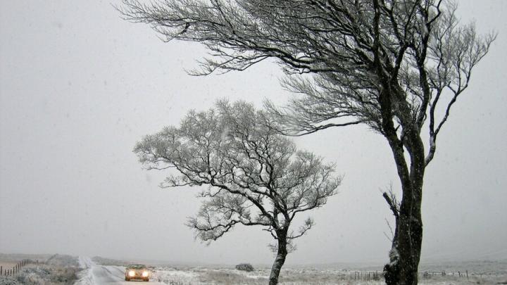 Сильный ветер обещают завтра в Саратове