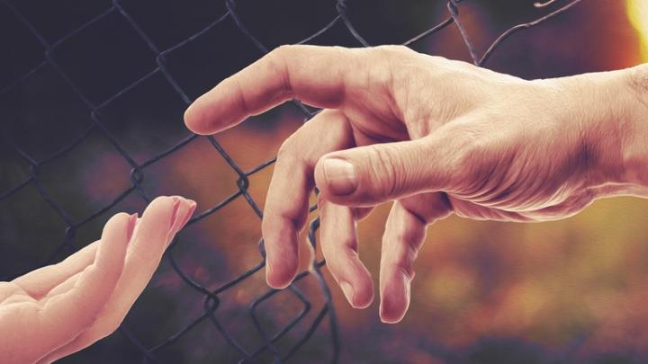 В Саратовской области арестовали 25 организаторов незаконной миграции