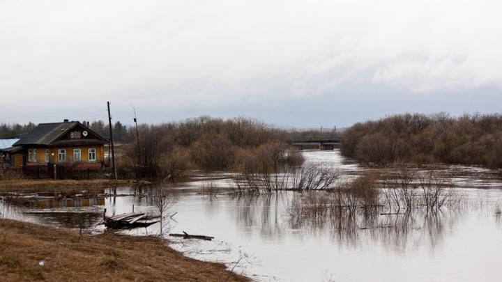 В Базарном Карабулаке затоплено несколько домов