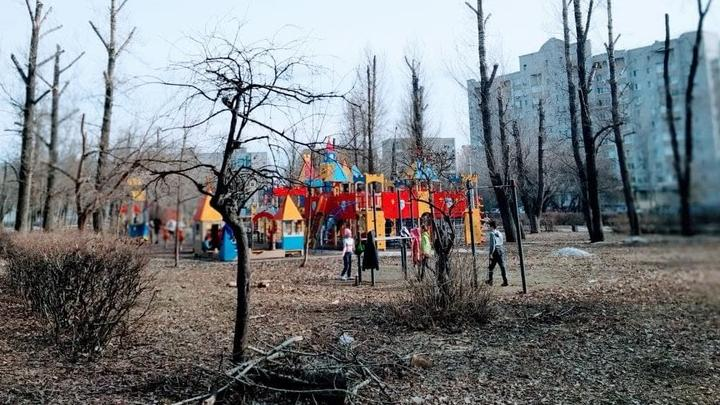 Два детсада закрыты в Саратовской области из-за коронавируса и ОРВИ