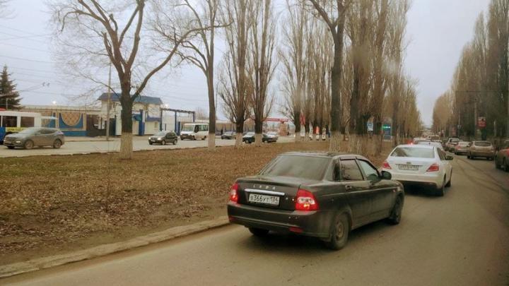 До +24 градусов местами по Саратовской области
