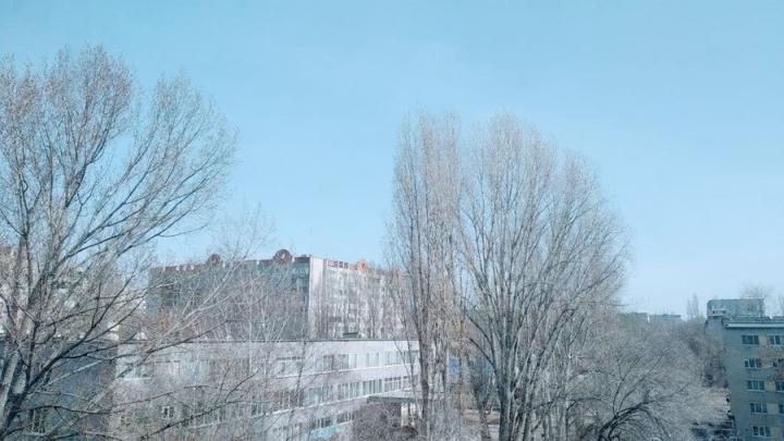 Рабочая неделя будет теплой в Саратове, а к выходным вернется весенняя прохлада