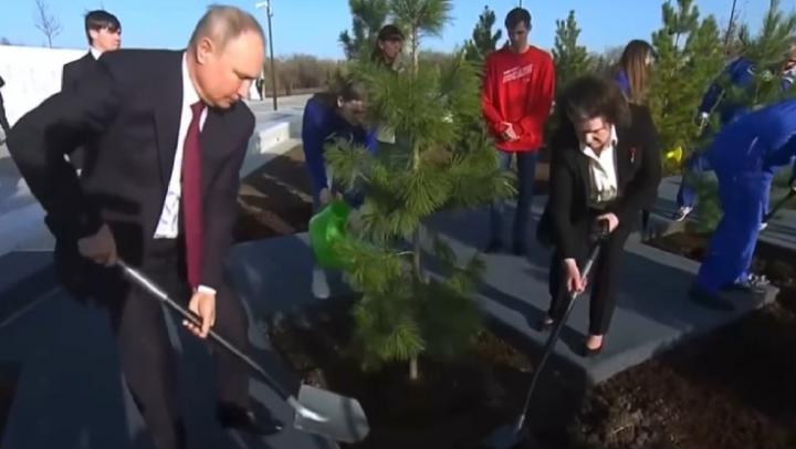 Путин с Терешковой посадили кедр в Парке покорителей космоса | ВИДЕО