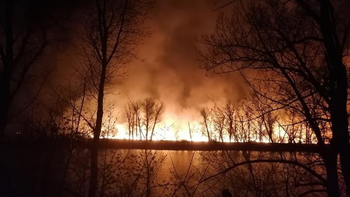 Балаковцы жалуются на окруженную огнем деревню и равнодушие пожарных | ВИДЕО