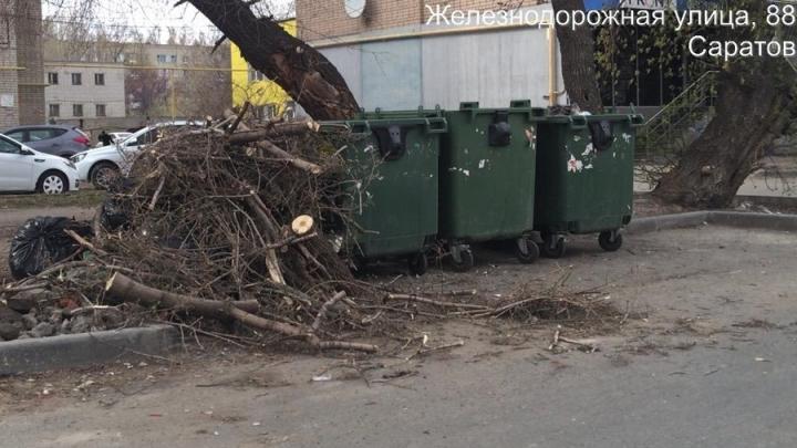 Регоператор: УК обязаны самостоятельно обеспечить вывоз опиленных деревьев