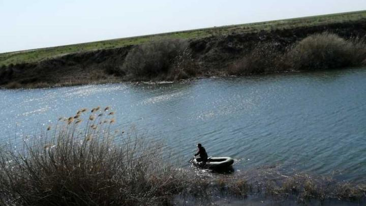 Более 400 раков были спасены из рук саратовских браконьеров