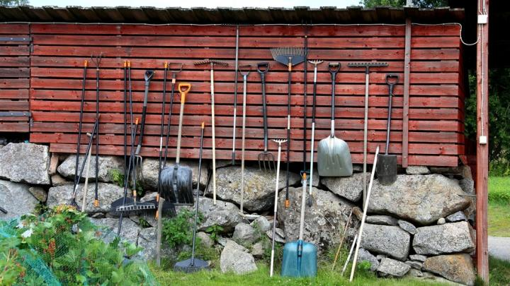 Ярмарки для садоводов открываются в четырех районах Саратова