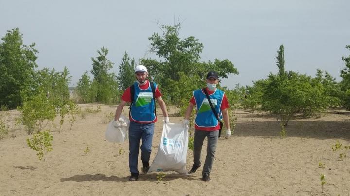 Два «КамАЗа» мусора вывезли с берега Волги в Саратове