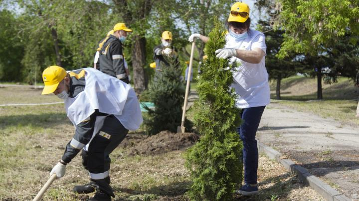Коллектив Саратовского НПЗ провел экологическую акцию по озеленению города