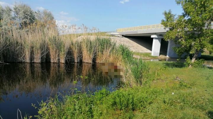 В реке Курдюм в Саратовской области обнаружено тело мужчины| 18+