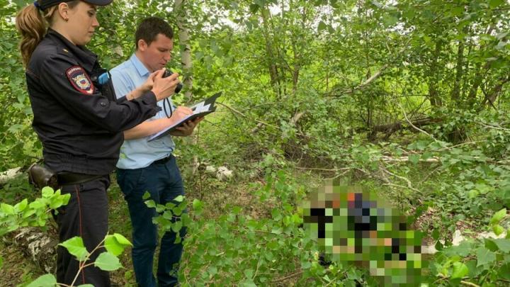 Грибник нашел разложившийся труп на выезде из Заводского района Саратова