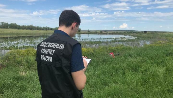 Пастух вместе с лошадью утонул в Ивантеевском районе