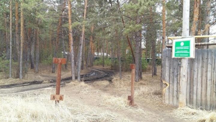 Саратовец оштрафован на 20 тысяч рублей за захват лесного участка