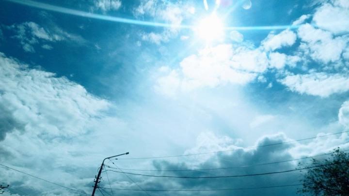 Аномальная жара в Саратовской области сохранится до понедельника