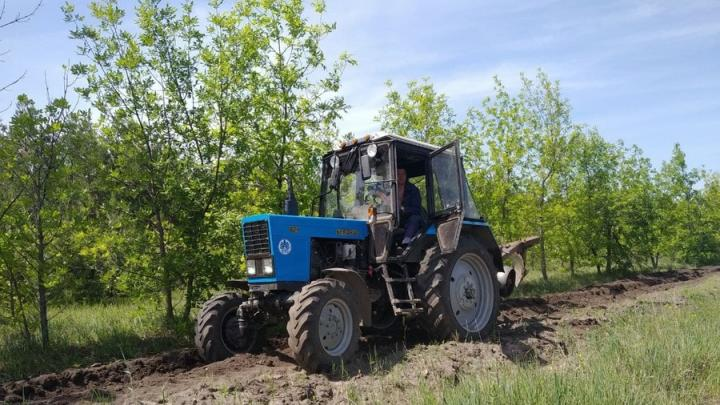 Саратовчанка продавала трактор и лишилась 97 тысяч рублей