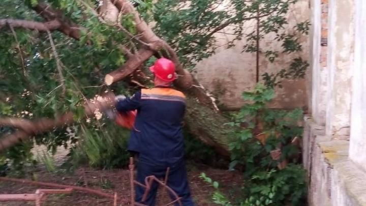 Ураган в Саратовской области снес кровли и оборвал линии электропередач