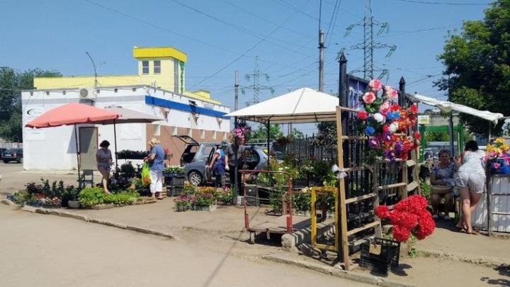 В двух районах Саратова открываются постоянно действующие ярмарки