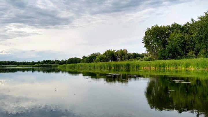 Снят нерестовый запрет в Саратовской области: можно выходить на рыбалку