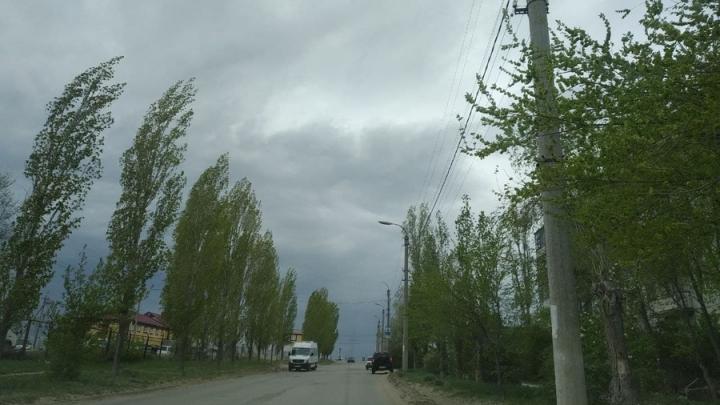 Сильный ветер не покинет Саратовскую область