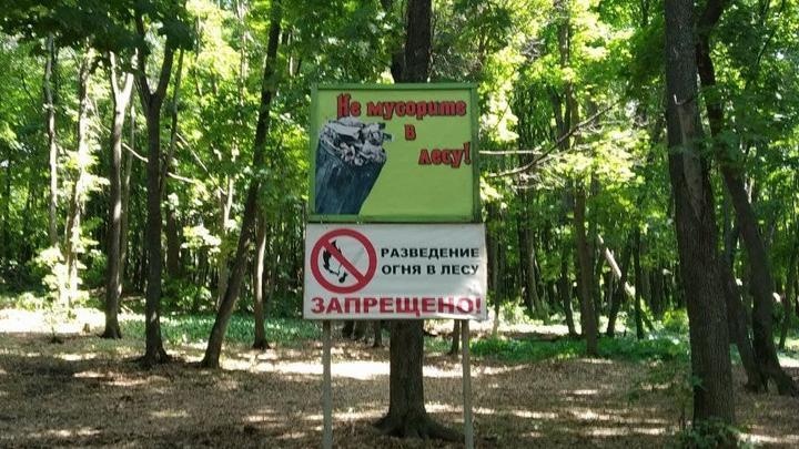 В Саратовской области снова вводится особый противопожарный режим
