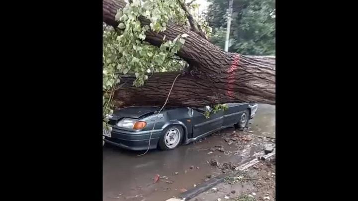 Бушевавшая стихия в Саратове повалила деревья и залила дороги
