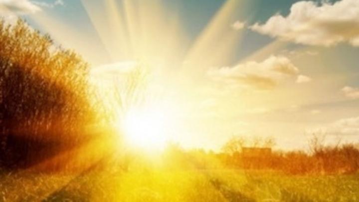 Сегодня в Саратове тепло и малооблачно