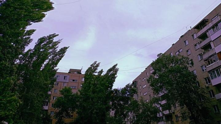 Шквалистый ветер ожидается в Саратовской области