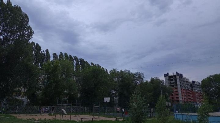 Новая неделя в Саратовской области начнется с гроз и ветра