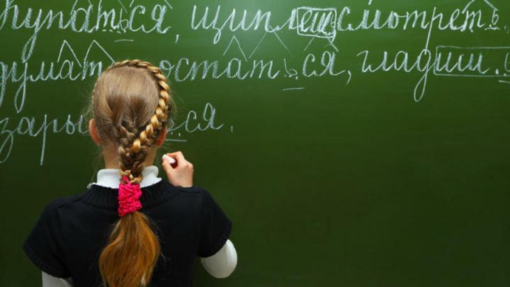 Рынок дистанционного преподавания вошёл в стадию высокой конкуренции
