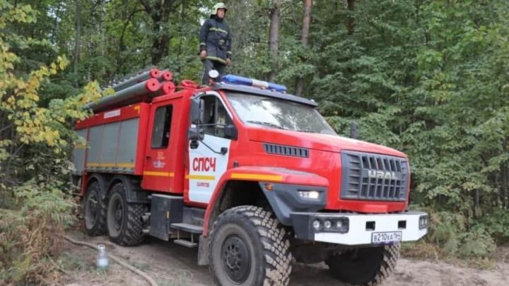Саратовские пожарные продолжают работать в природном заповеднике «Заповедная Мордовия»