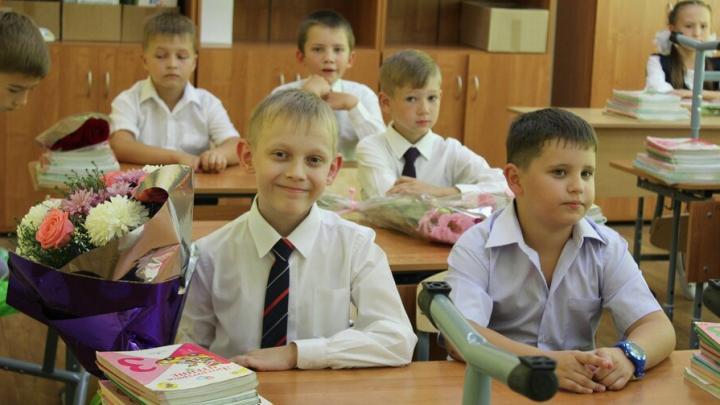 У школьников появились новые льготы